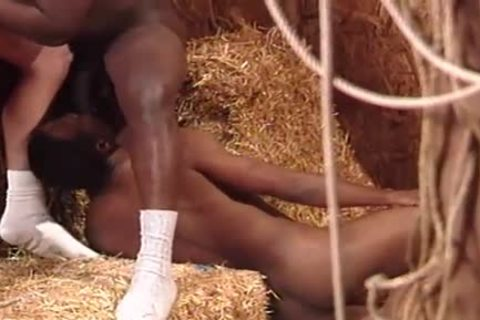 Glory Holes two White males darksome knobs - Scene 4