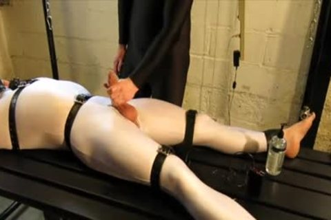 Our Live-in Pup Zathin Loooves To Be Tickled type-of. So We Put Him In smth Stretchy, thonged Him Down, And Decided To watch How Much that man Could Take! In Part 1, We Added A Sound-activated Electro Plug Just To Keep Things Interesting. Here In P