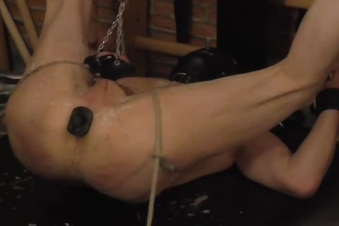 master: Sadist52   villein: MasoFun During A 4 H Session The villein Learned To Feel The Difference betwixt Whip, Flogger, Crop And Cane. that lad Ist Treated With excited Wax, Elektroplug, Ginger, Penisplug. that lad is Suspended Upside Down, His