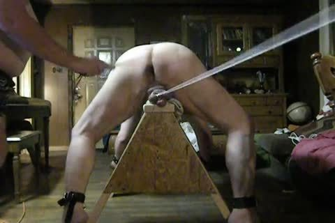 chubby Daddy acquire fastened Up On His Sawhorse, Then Spanked And Balls Bashed.
