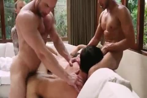 Breed That wazoo - bare bunch sex 5