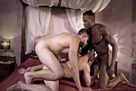 large cock homosexual threesome And cumshot