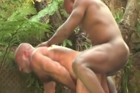 JC Carter plowing A Daddy