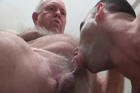 grandpa Bear hammers A pumped up young fellow