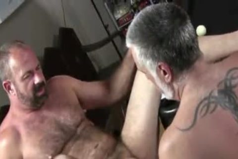 dirty Daddy Bears hammer On The Pooltable