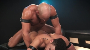 Hot House: Swallow amongst athletic latino hunk Sean Zevran